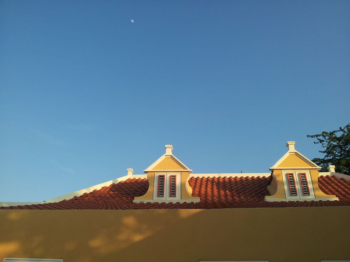 The Yellow House roof and windows