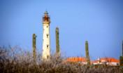 Idyllic California Lighthouse scenery